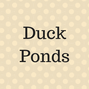 Utah County duck ponds