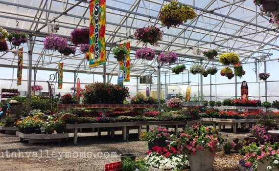 McCoard's Garden Center, Provo, Utah