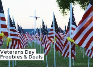 Veterans Day Freebies & Deals