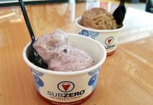 Sub Zero Ice Cream Review