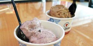 Sub Zero Ice Cream Review